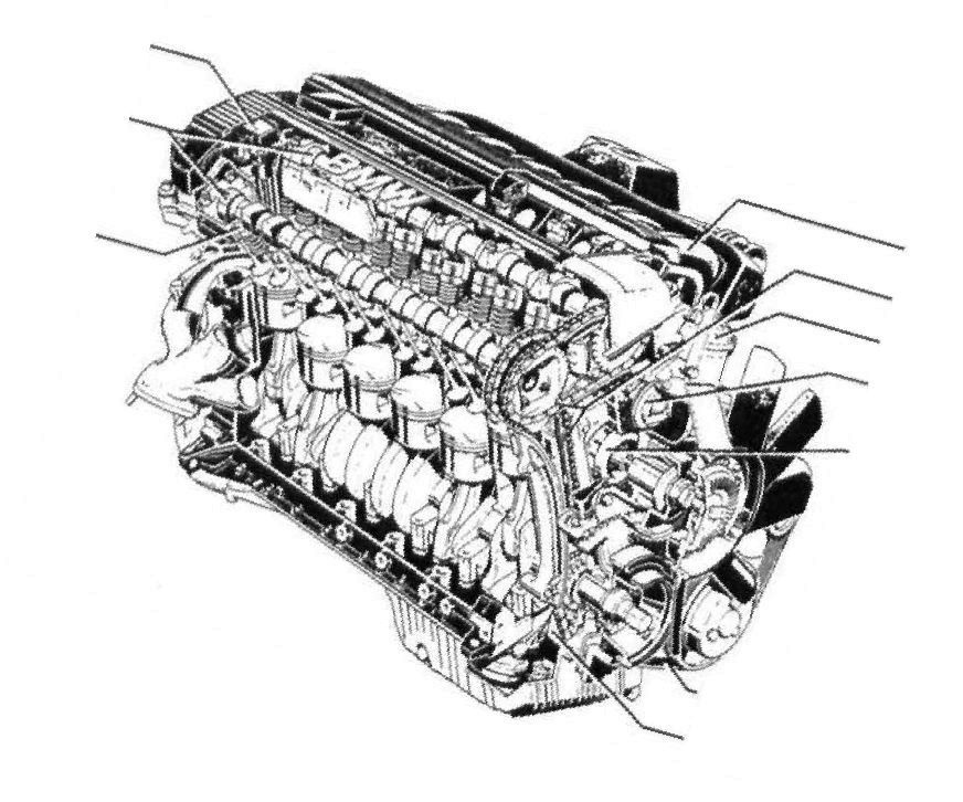 M50 The Best Engine For Bmw 3 Bmwe36rhbmwe36: 92 Bmw 525i Engine Diagram At Gmaili.net